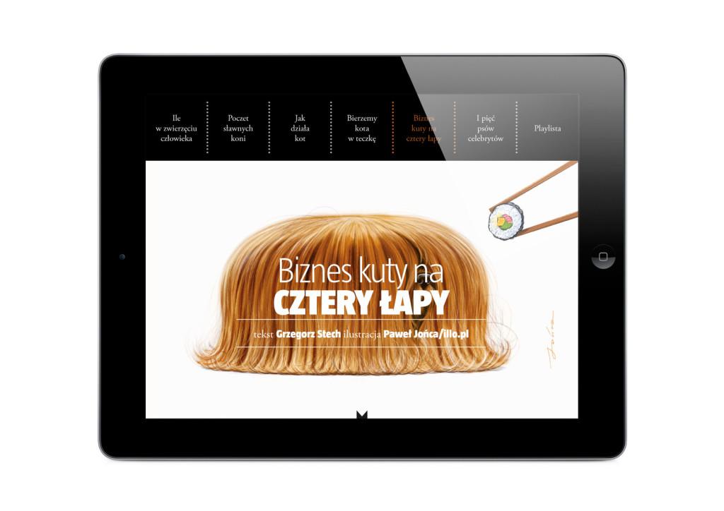 iPad-MM30-13.jpg
